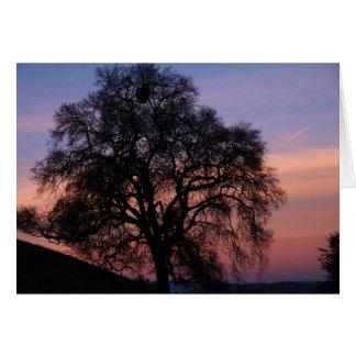 Oaks at Sunset Card