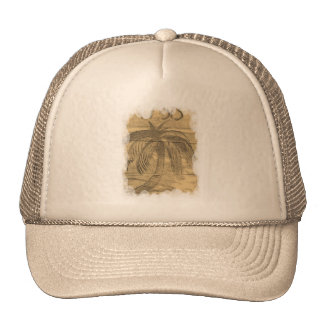 Oasis Hats