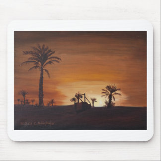 Oasis with sunset