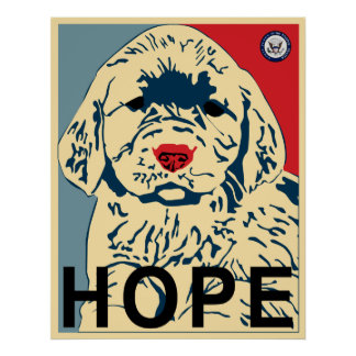 obama first puppy -  hope poster