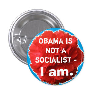 Obama is not a socialist - I am. Pin