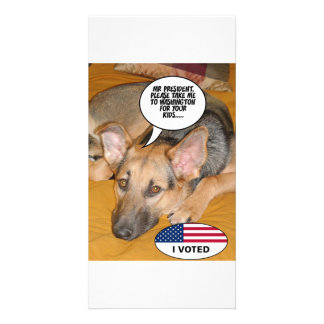 Obama Pet Whitehouse Humor Picture Card