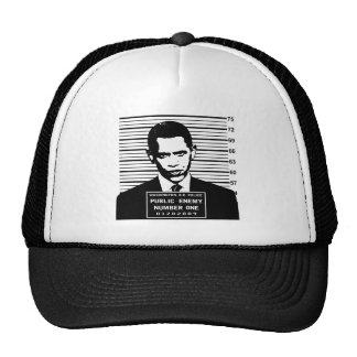 Obama - Public Enemy Number One Cap