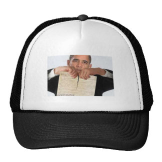 Obama Ripping Up the Constitution Cap