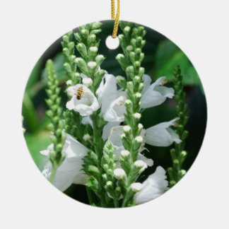 Obedient Plant Christmas Ornaments