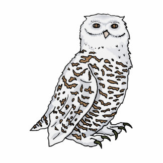 Oberton Owl Standing Photo Sculpture