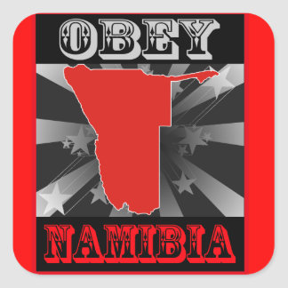 Obey Namibia Square Sticker