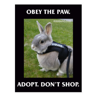 Obey the Paw Postcard