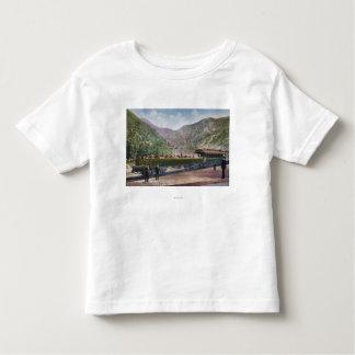 Observation Railroad Car T Shirts