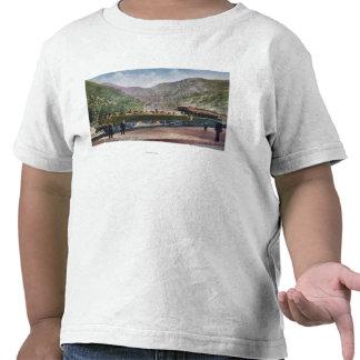 Observation Railroad Car Tshirt