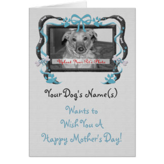 OBSOLETE: Mother's Day from the Dog blue Greeting Card