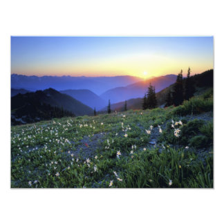 Obstruciton Point Sunset Olympic NP WA USA Photographic Print