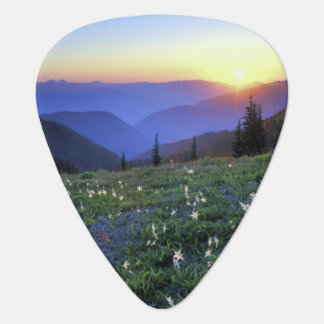 Obstruciton Point Sunset, Olympic NP, WA, USA Plectrum