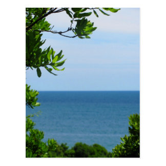 Obstructed Ocean View Postcard