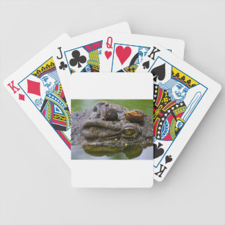 occhio di coccodrillo.jpg bicycle playing cards