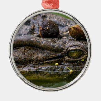 occhio di coccodrillo.jpg Silver-Colored round decoration