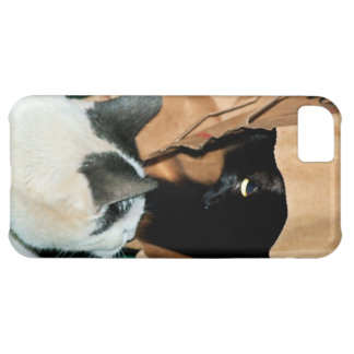 Occupied, Go Away! Funny Cats iPhone 5C Covers