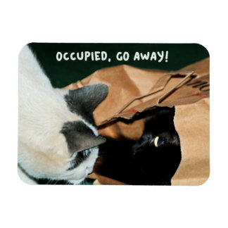 Occupied Go Away Funny Cats Rectangle Magnets