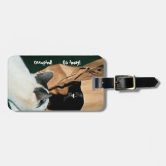 Occupied, Go Away! Funny Cats Tag For Bags