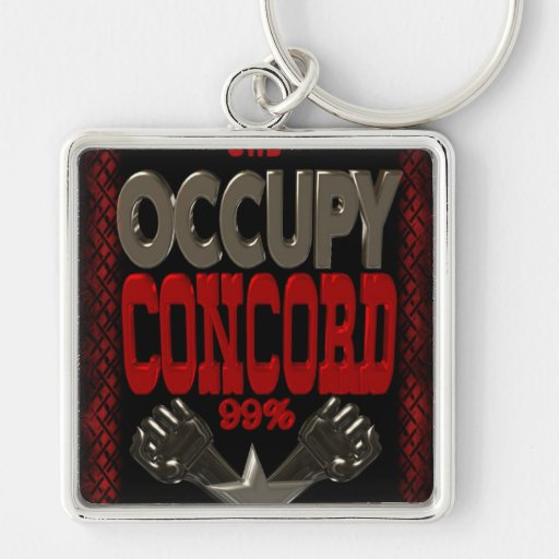 Occupy Concord OWS protest 99 strong poster Key Chains