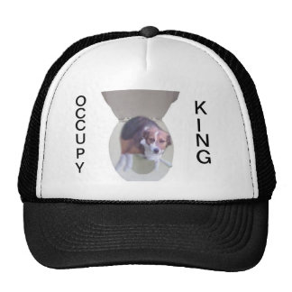 Occupy King Hat