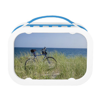 Ocean and horizon with clear blue sky lunch box