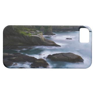 Ocean and rocky shore of remote area 2 barely there iPhone 5 case