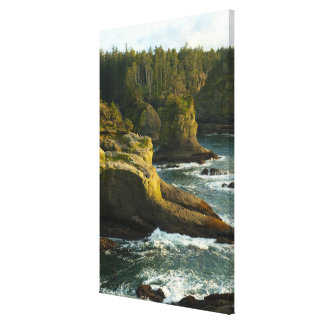 Ocean and rocky shore of remote area stretched canvas print