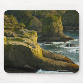 Ocean and rocky shore of remote area mouse pad