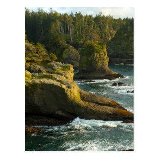 Ocean and rocky shore of remote area postcard