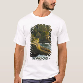 Ocean and rocky shore of remote area T-Shirt