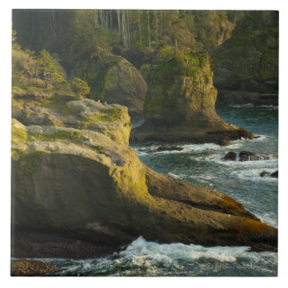 Ocean and rocky shore of remote area large square tile