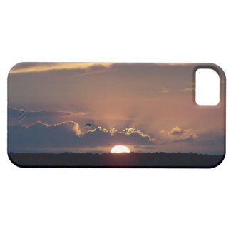 Ocean Beach Sunset California Coast iPhone 5 Covers