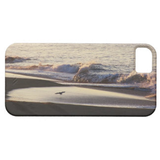 Ocean Beach Waves California Coast Barely There iPhone 5 Case