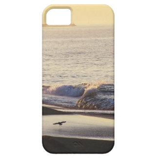 Ocean Beach Waves California Coast iPhone 5 Covers