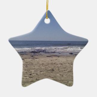 Ocean Ceramic Star Decoration