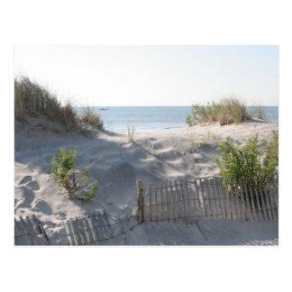 Ocean City Dunes Postcard