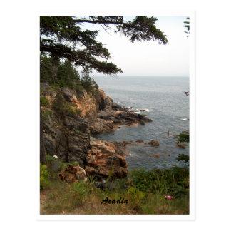Ocean Drive in Acadia Postcard