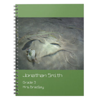 Ocean Floor Life Notebook, Green, Customizable Spiral Notebook