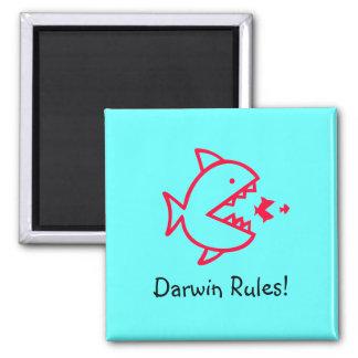 Ocean Glow_Darwin Rules! Magnet