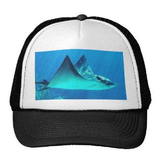 Ocean Photography Stingray Design  Hat