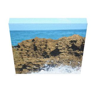 Ocean Reef Canvas Print