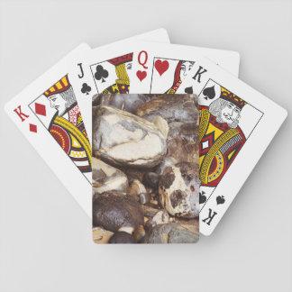 Ocean Rocks Playing Cards