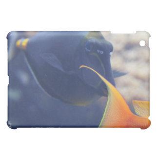 Ocean Splendor HD iPad Case - Blue Fish