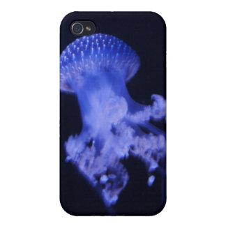 Ocean Splendor HD iPhone 4 Case - Jellyfish