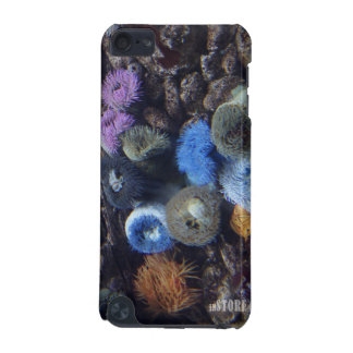Ocean Splendor HD iPod Touch Case - Coral Reef