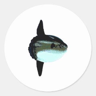 Ocean Sunfish - Mola Mola Round Sticker