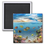 Ocean Underwater Coral Reef Tropical Fish Square Magnet