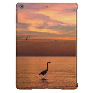 Ocean View at Sunset iPad Air Covers