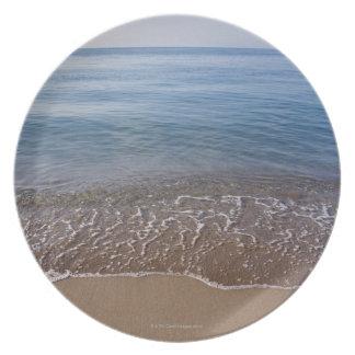 Ocean View Plate